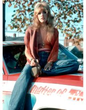 55022d2c0e236_-_hbz-stevie-nicks-car-2-040611-de